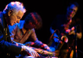 David Amram - Jazz-folk-world music pioneer (2012) 2.2MB